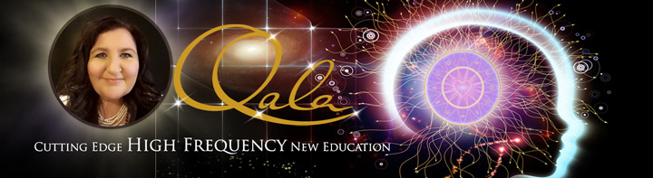 Qala High Frequency banner